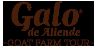 Galo de Allende